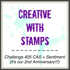 CWS_25 CAS Sentiment (2nd Anniv)