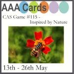AAA card challenge 115