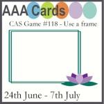 AAA challenge 118